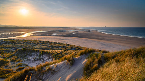 Budle Bay from the Dunes The mud flats at Budle Bay at low tide are part of Lindisfarne Nature reserve on Northumberland's AONB coastline northeastern england stock pictures, royalty-free photos & images