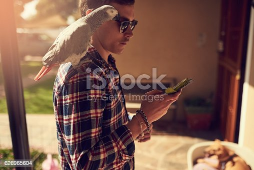 Shot of a young man using his phone with his pet parrot perched on his shoulder