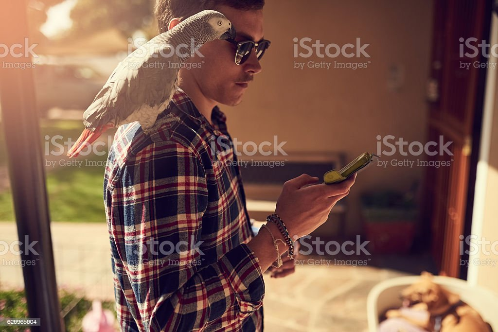 Buds of a feather flock together stock photo