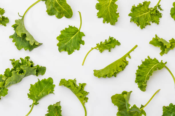 Buds of kale (cabbage). Salad with a rustic and healthy aspect. Isolated on white background. Texture. Buds of kale (cabbage). Salad with a rustic and healthy aspect. Isolated on white background. Texture. kale stock pictures, royalty-free photos & images
