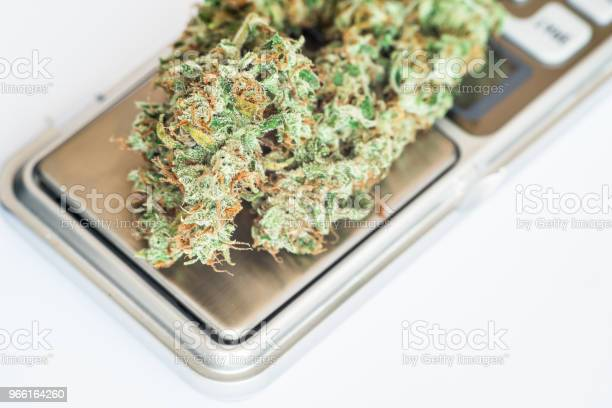Knoppar Av Marijuana På Vågen Ogräs Och En Kvarn Med Crushe Använda Thc Och Cbd-foton och fler bilder på Blomma