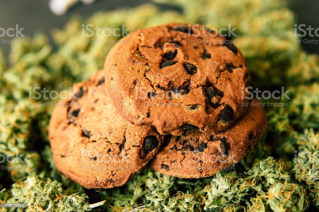 Knospen von Marihuana auf dem Tisch. Konzept des Kochens mit Cannabiskraut. Behandlung von medizinischem Marihuana zur Verwendung in Lebensmitteln, auf einem schwarzen Hintergrund Cookies mit cannabis - Lizenzfrei Agrarbetrieb Stock-Foto
