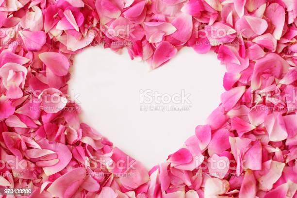 Buds of tea roses in shape of heart for valentines day picture id973438280?b=1&k=6&m=973438280&s=612x612&h=qajbrxhj5blruaatghrvcbmhyeoah26e4wlvb2rqjqm=
