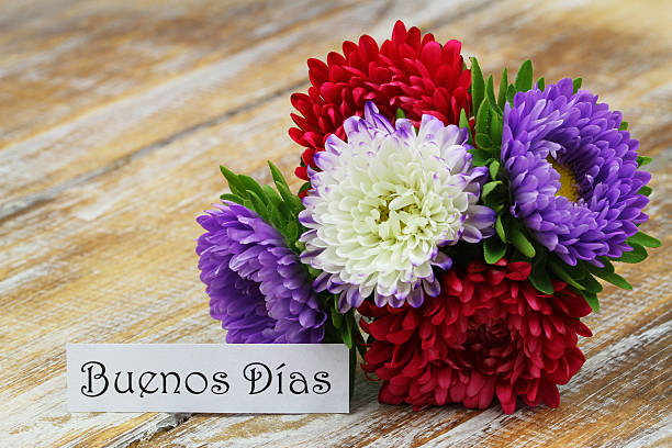 Buenos Dias (Good morning in Spanish) with colorful aster flowers stock photo