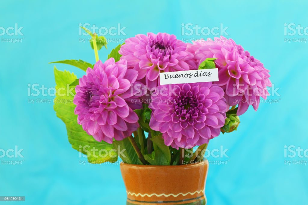 Buenos dias (which means good morning in Spanish) with pink dahlia bouquet stock photo