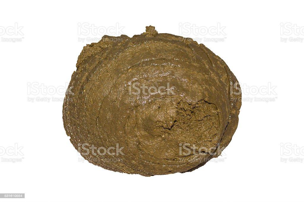 buffalo dung. Clipping path stock photo