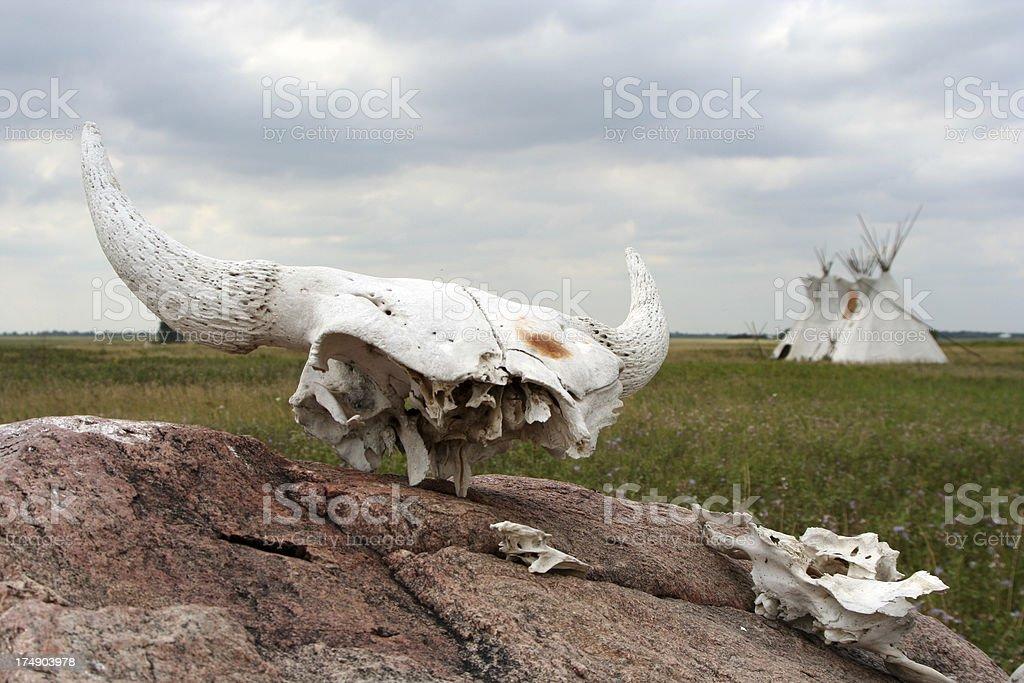 Buffalo remains and tipis stock photo