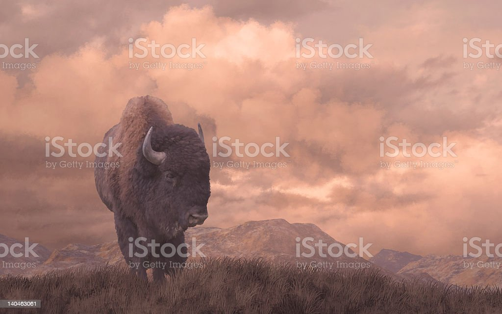 Buffalo soldier born in America royalty-free stock photo