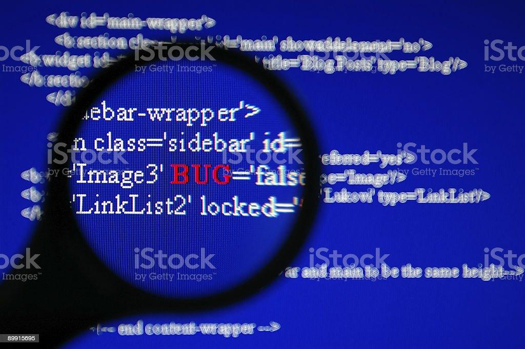 Bug Tracking royalty-free stock photo