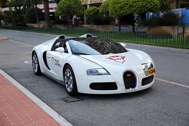 Bugatti Veyron 16.4 Grand Sport stock photo