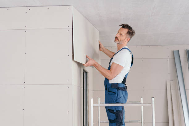Builder or handyman fitting wall cladding stock photo
