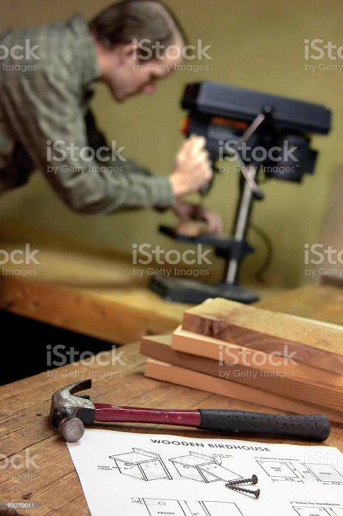 Building A Birdhouse royalty-free stock photo