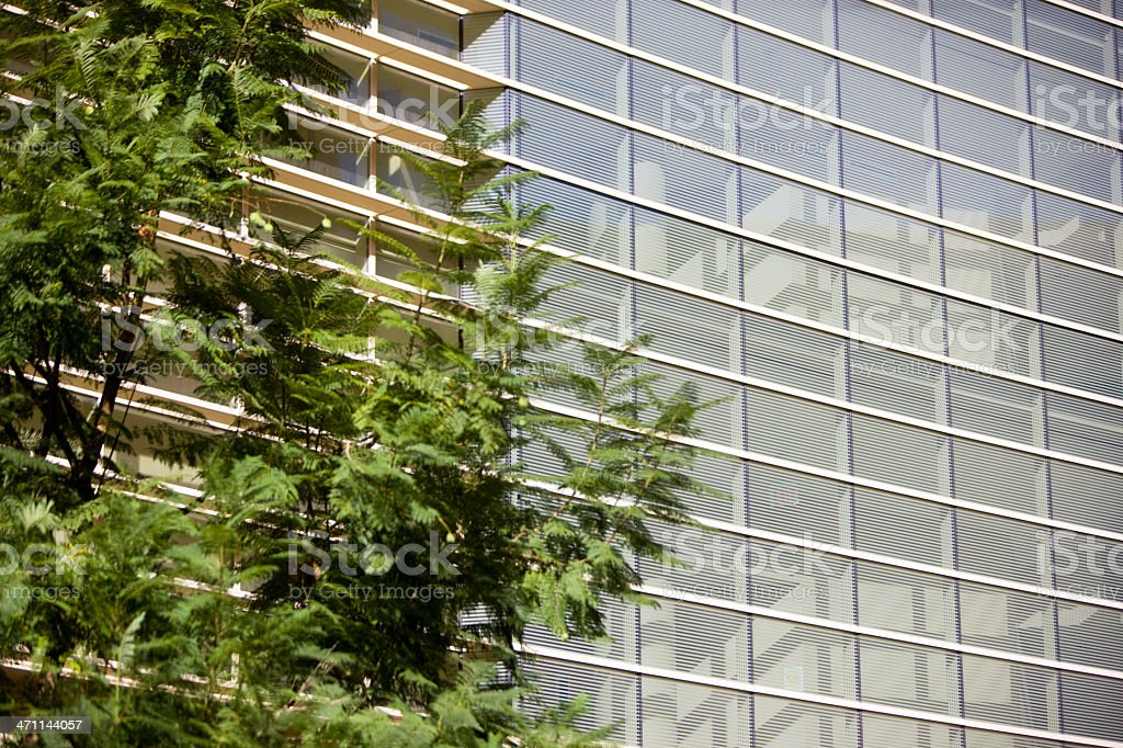 Building and tree royalty-free stock photo