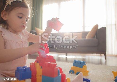 865870702 istock photo Building block game 1010813616