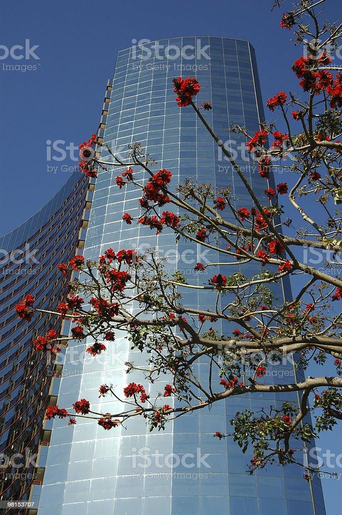 Progettazione architettonica di San Diego 3 foto stock royalty-free