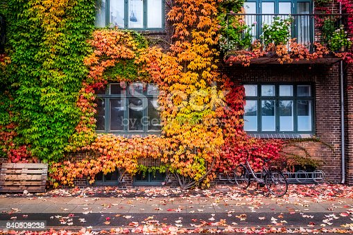 istock Building in Copenhagen with bright colored leaves showing the change of summer into autumn. 840509238