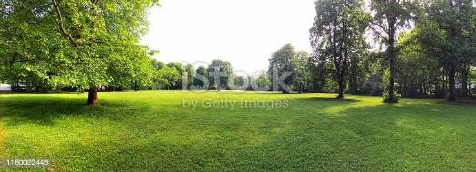 istock Building land for new construction project on green meadow, plot for construction area 1150022443