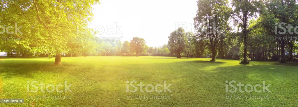Building land for new construction project on green meadow, plot for construction area royalty-free stock photo