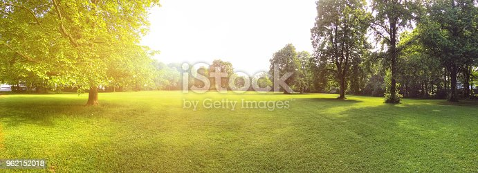 istock Building land for new construction project on green meadow, plot for construction area 962152018