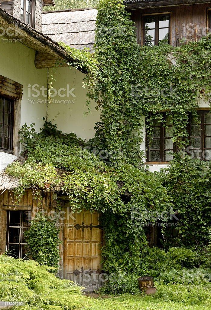 Bâtiment Envahi par la végétation et plantes - Photo
