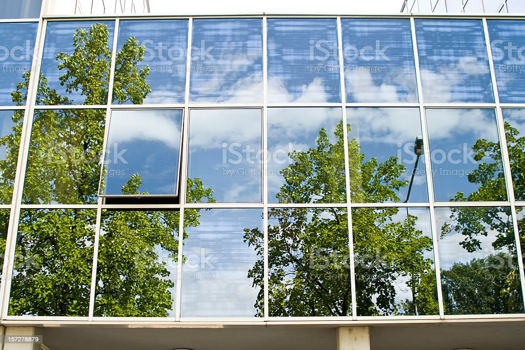 Building Windows showing green trees royalty-free stock photo