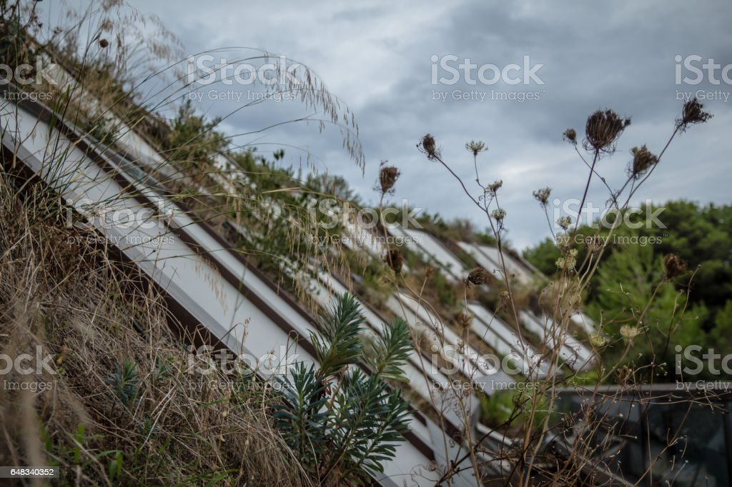 Building with grass and vegetation along balconies on cold winter day stock photo