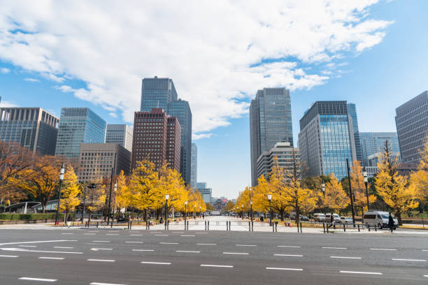 Buildings in Tokyo with autumn leaves stock photo