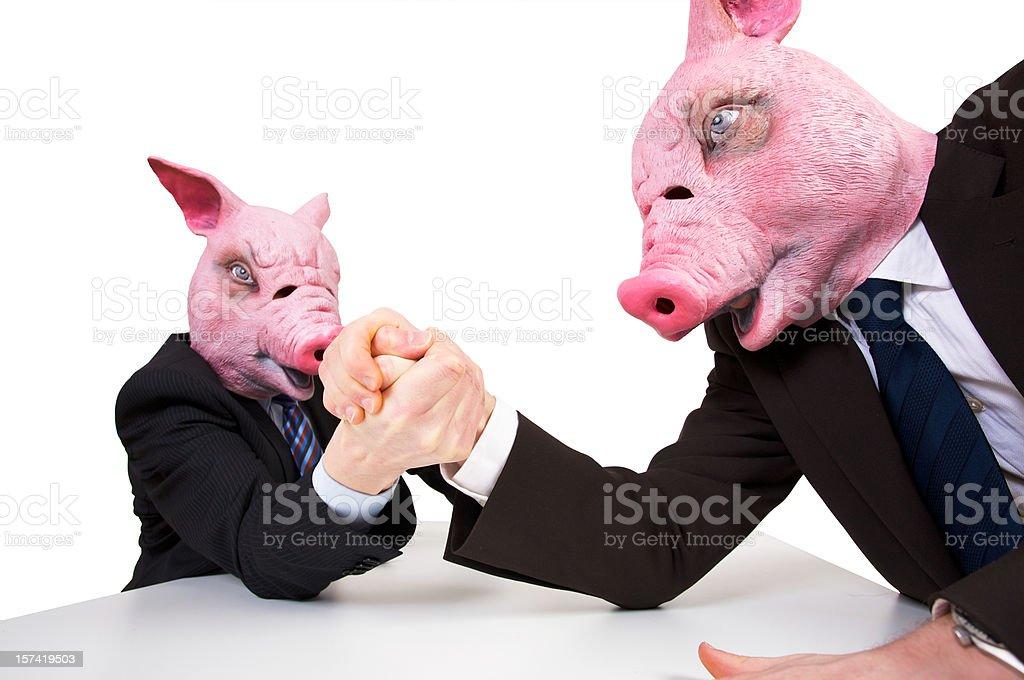 Buisiness porcs - Photo