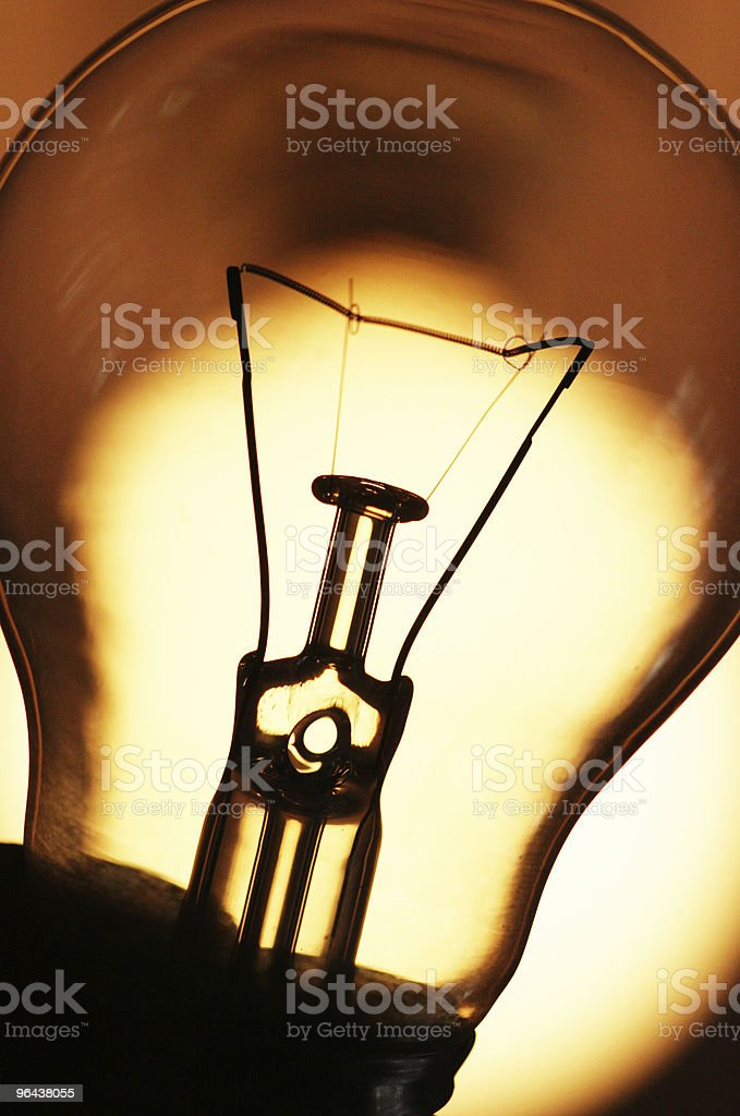 Bulb Closeup royalty-free stock photo