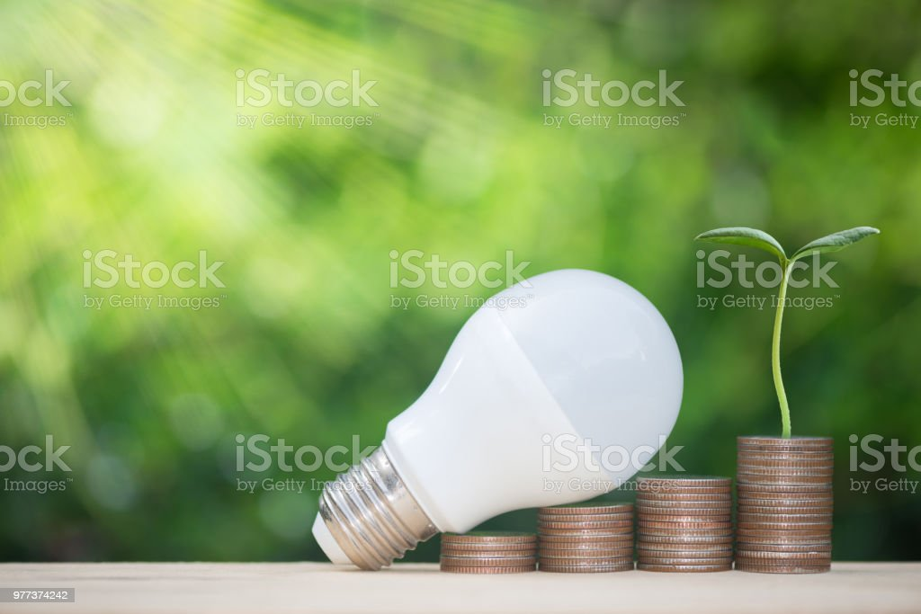 Pièce Droit Et De Libre Plante Photo Ampoule Led Sur Piles htxsQrdC