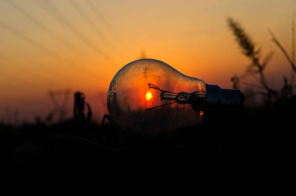 Bulb with sunset in background stock photo