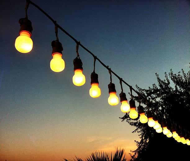 Bulbs line at sunset stock photo