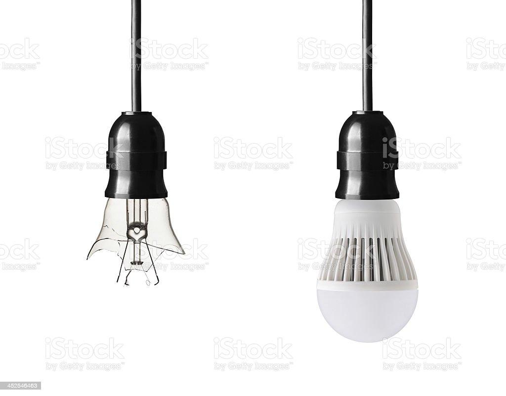bulbs stock photo