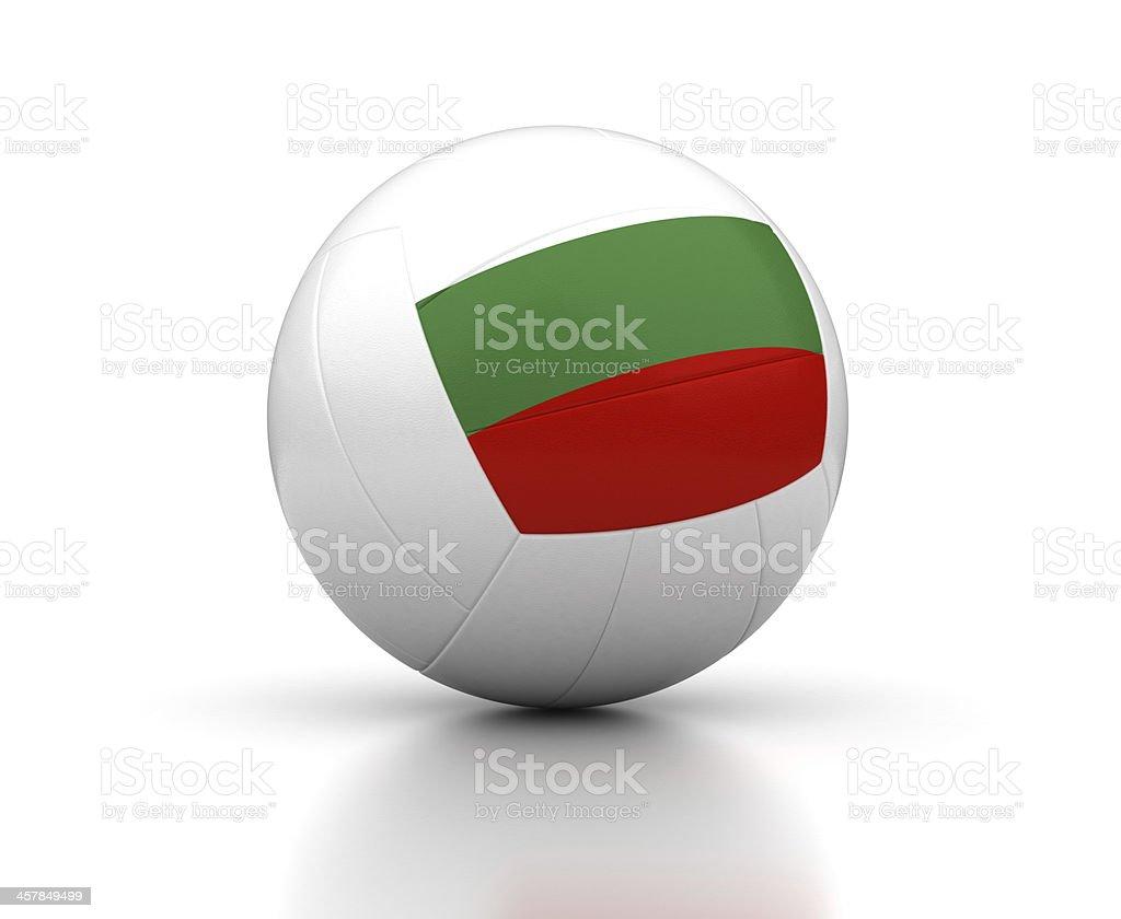 Bulgarian Volleyball Team stock photo