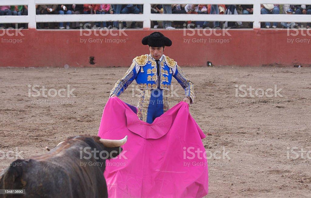 bull and man royalty-free stock photo