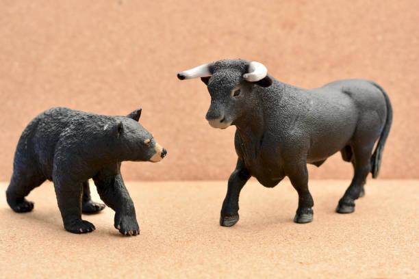 Bull Bear Confrontation stock photo
