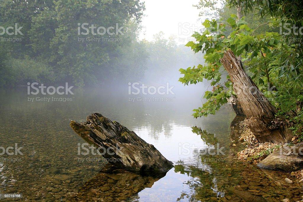 Bull Creek in the fog stock photo