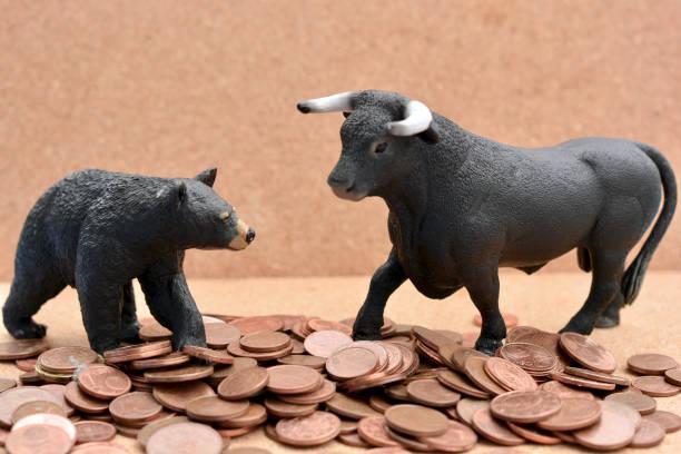 Bull vs Bear Market stock photo