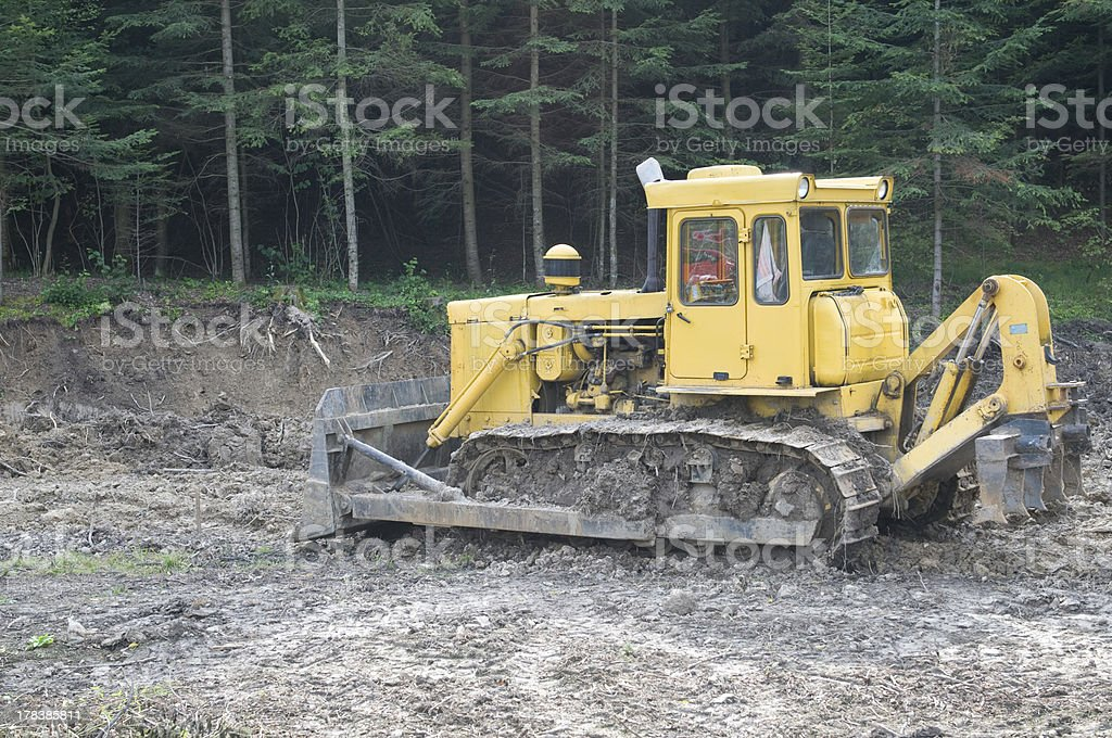 bulldozer and forest stock photo