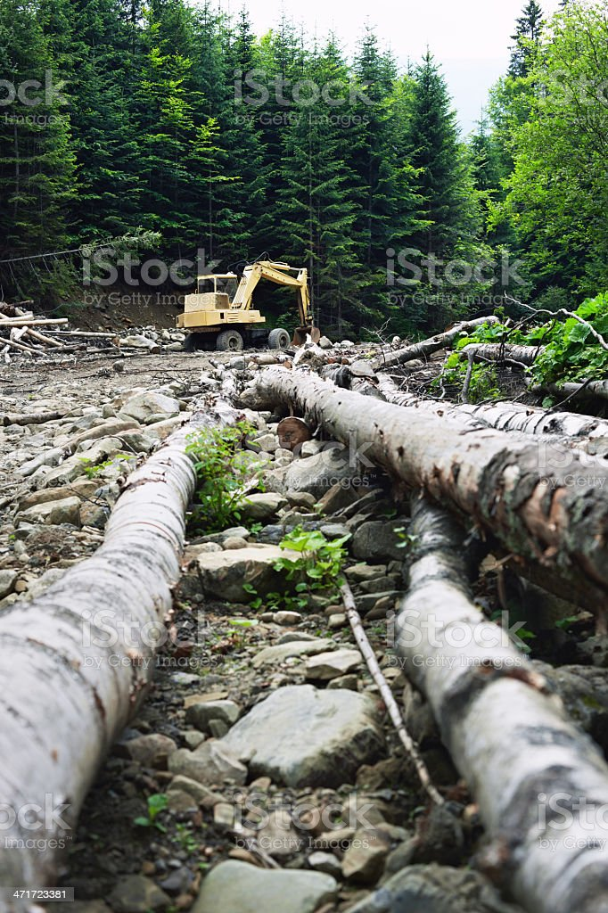 Bulldozer in the forest stock photo