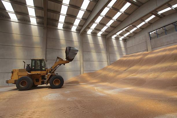 bulldozer, silo, jaune, le warehouse, industrie lourde - Photo
