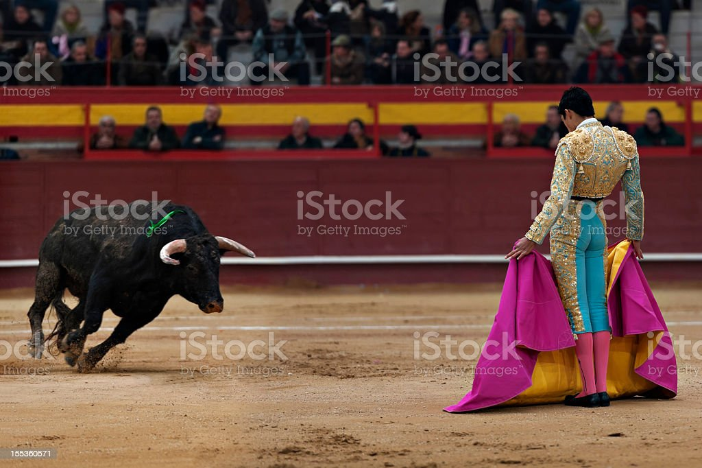 Bullfighter dressed in ornate costume with bull charging stock photo