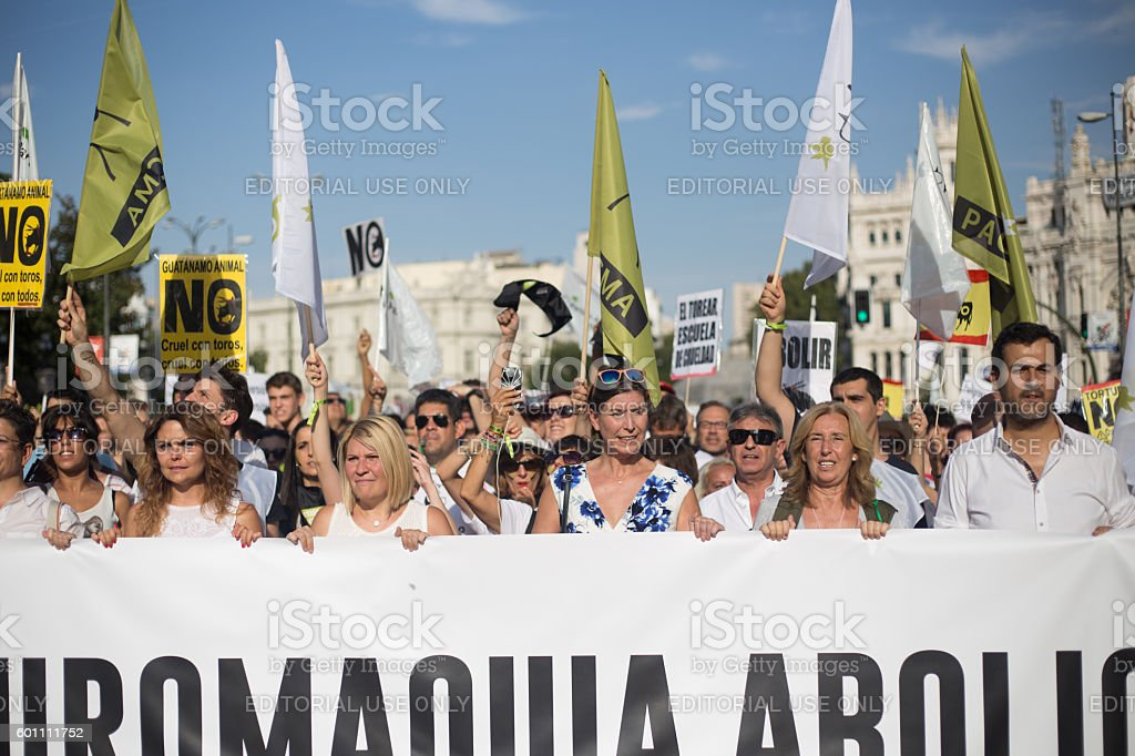 Bullfighting protest in madrid stock photo