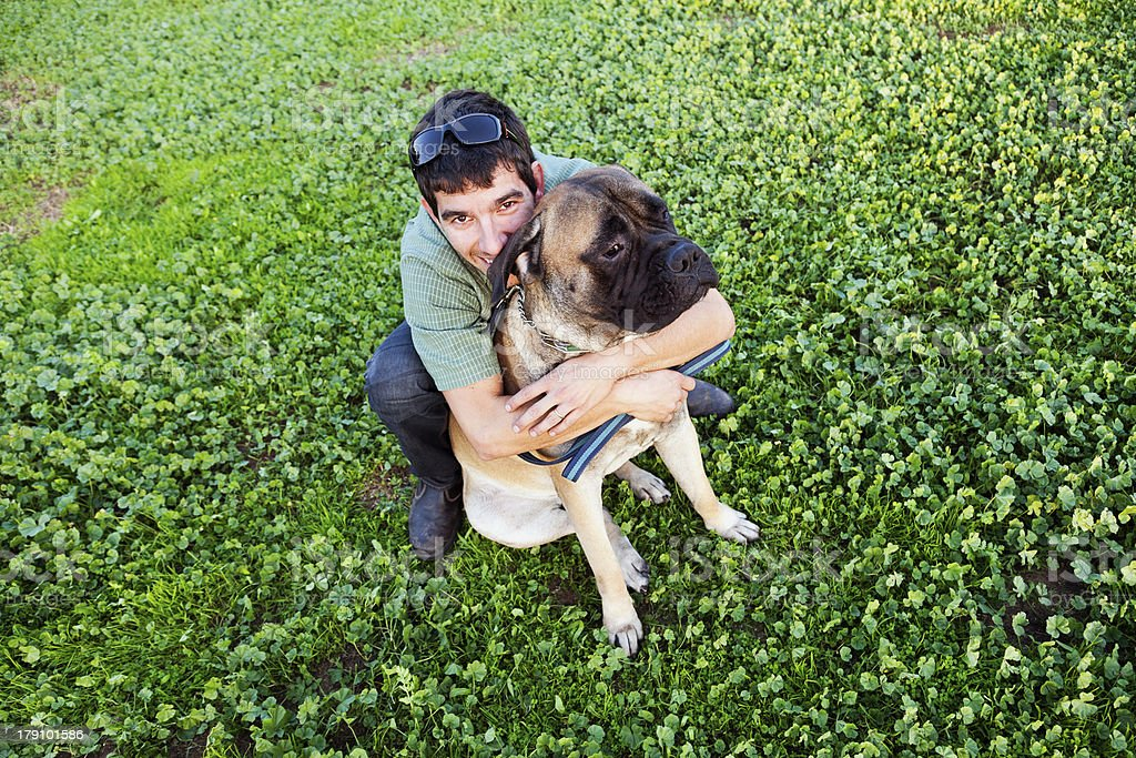 Bullmastiff Dog Hugging with Owner in Urban Park royalty-free stock photo
