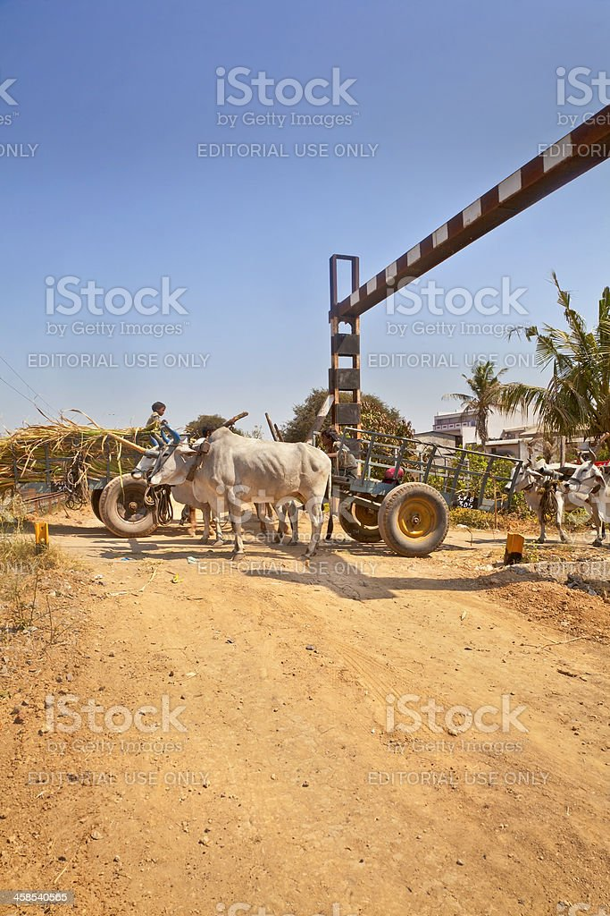 Bullock cart congestion Railway junction India royalty-free stock photo