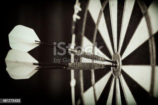 istock Bull's-Eye ! 481273433