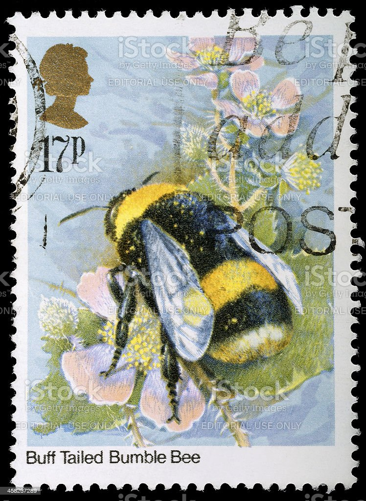 Bumble Bee Postage Stamp royalty-free stock photo