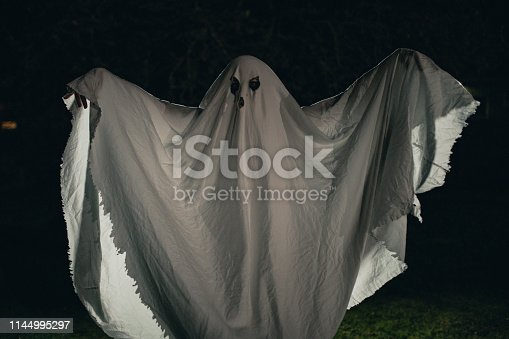 Person dressed up as a ghost standing outside at night.