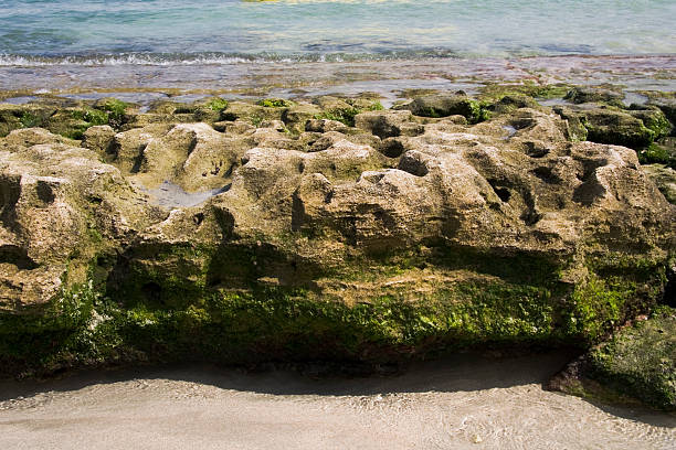 Holprig Rock am Los Gatos Beach – Foto