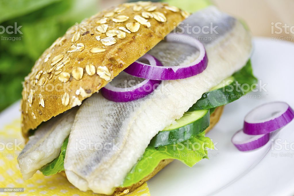 bun with herring stock photo